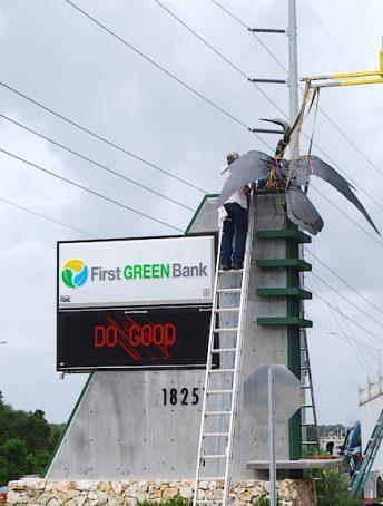 anhinga metal bird sculpture first green bank