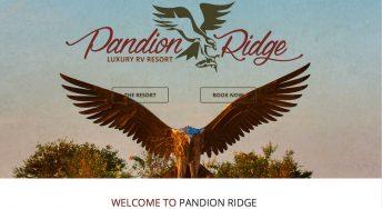 osprey sculpture large scale pandion ridge alabama